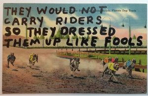 "Image of a dog race saying ""They would not carry riders so they dressed them up like fools"""